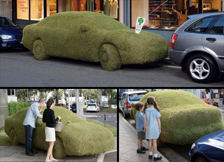 Sony Grass Car